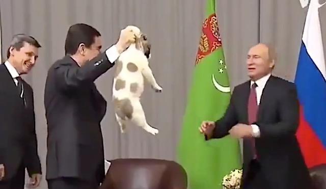 犬に優しいプーチン