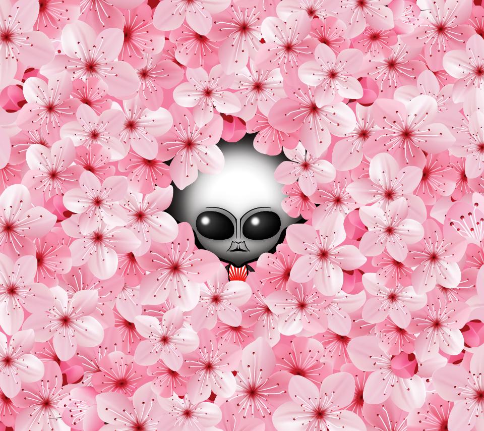 桜スマホ壁紙