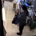 爬虫類盗難事件