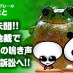カエルの鳴き声